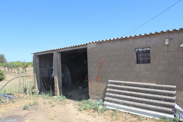 AGR1867 04 shed