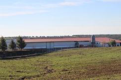 AGR1914 01 farm