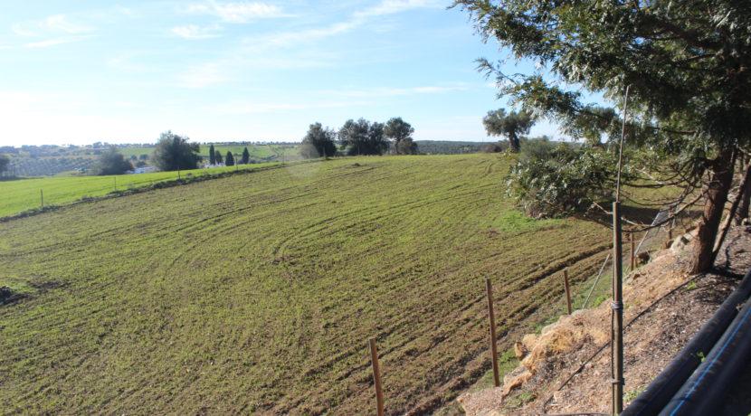 AGR1914 04 land