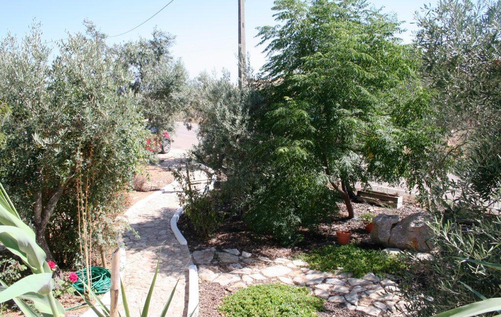 C1374 12 garden