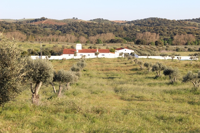 A traditional Monte, very well maintained. Very quiet location near Alvito and Vidigueira, halfway between Evora and  Beja, Alentejo.