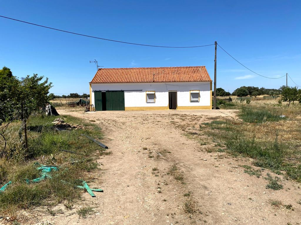 A typical Alentejo house, 2-bedrooms, 2 bedrooms more possible
