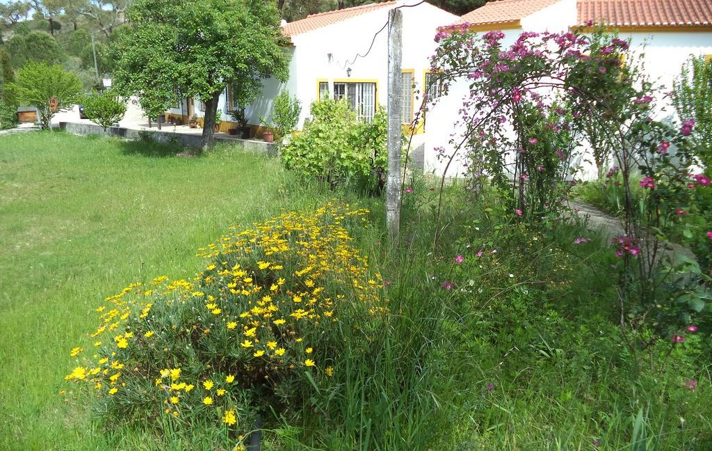 Casa Jardins (1)