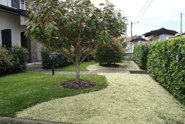 V1897 13 garden