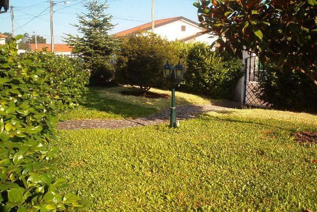 V1897 15 garden