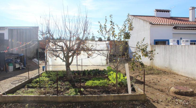 V1918 04 garden