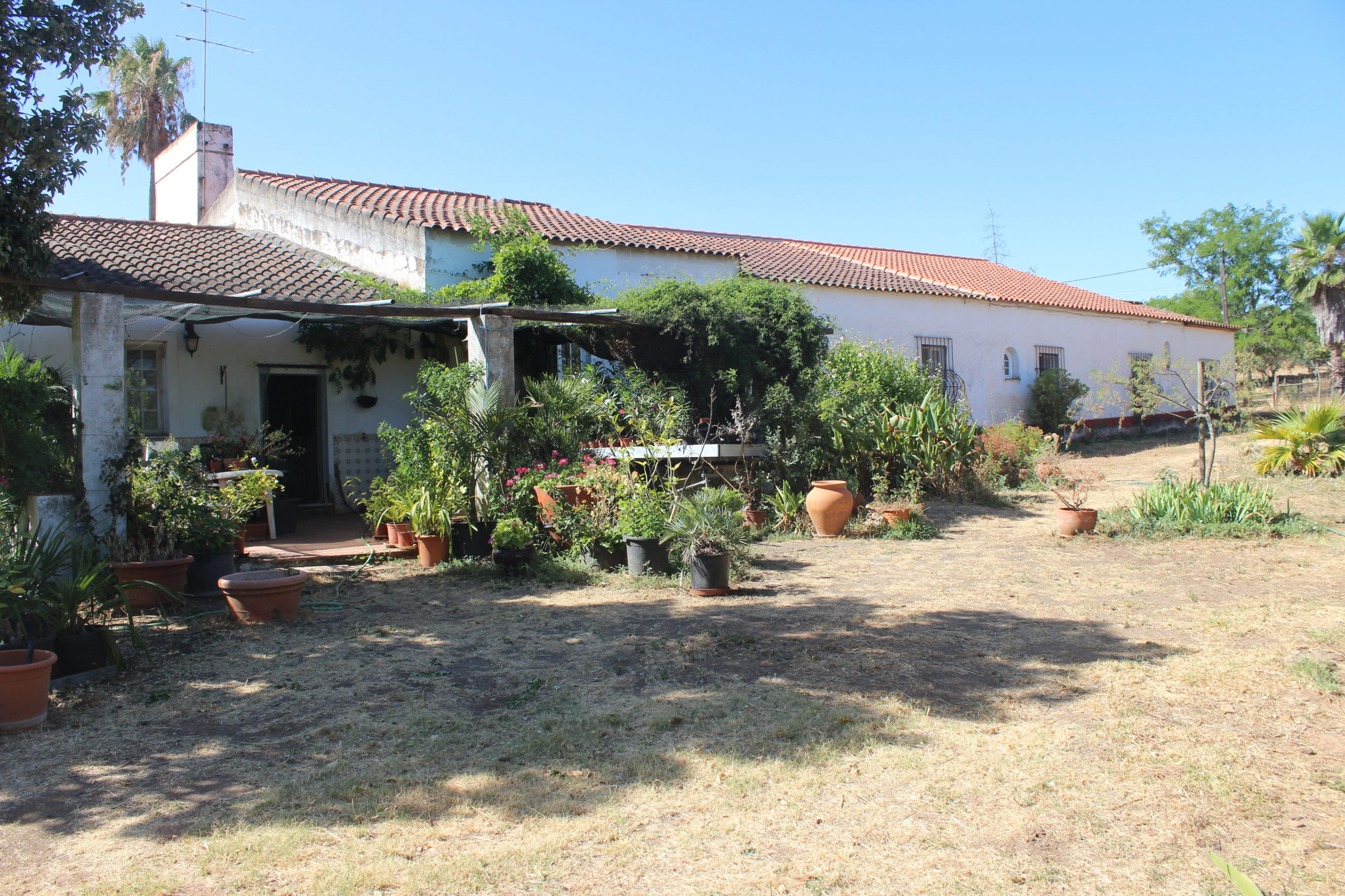 A traditional Herdade, 124.3 Ha, many outbuildings and stables, Alandroal, Alentejo.