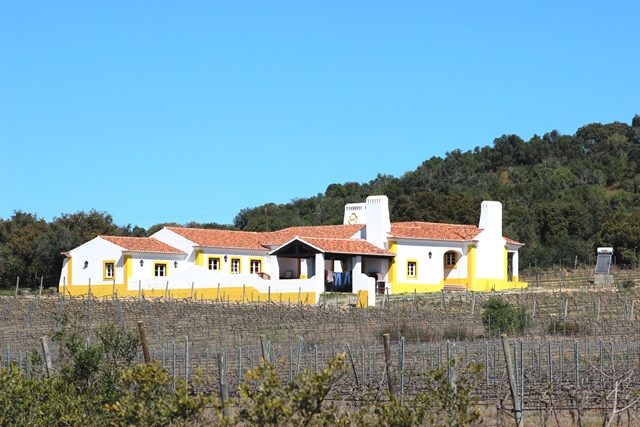 Quinta, V5, with Vineyards, Olive Groves & Pool near Vidigueira, Alentejo