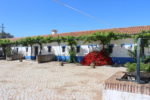 Herdade / Quinta near Elvas, 127 Ha.