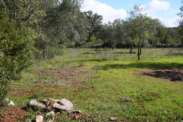 Plot Rustic in Amandoeiro